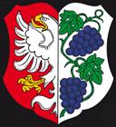 Město Miroslav